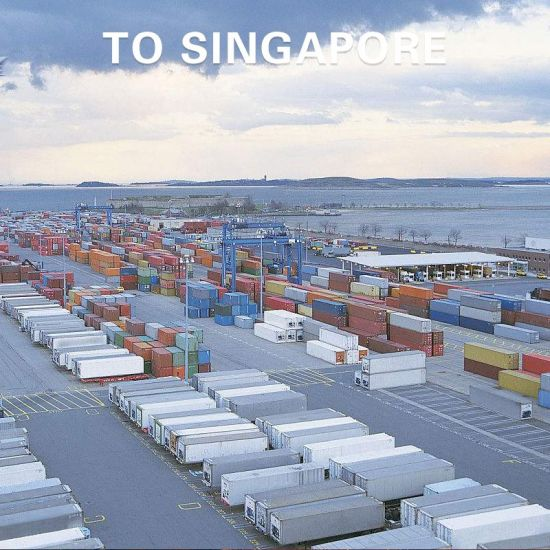 Competitive Shipping Freight From Guangzhou to Singapore pictures & photos