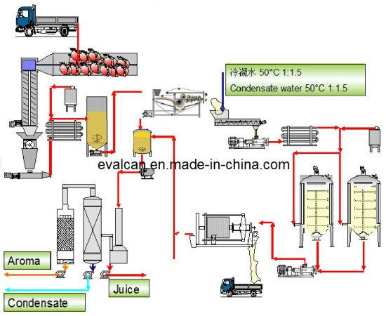 natural fruit juice extraction machine plant