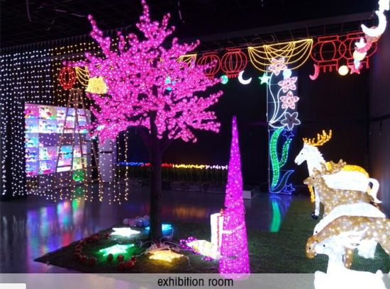 Customizable Decorative Outdoor 3D Christmas Holiday Party Motif LED Light