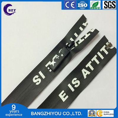 Silk Screen Printing of Various Materials Zipper and Ribbon Slider pictures & photos
