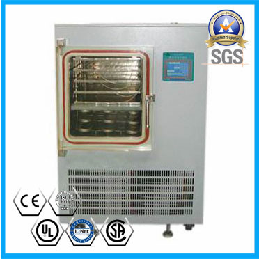 Vacuum Freeze Dryer for Sale (6~10kg/24hr) pictures & photos