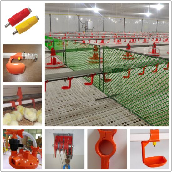 Poultry Farm Drinking System for Broiler and Breeder Chicken Birds