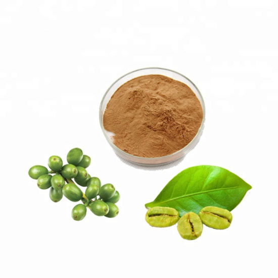 High Quality Green Coffee Bean Extract Weight Loss Powder China