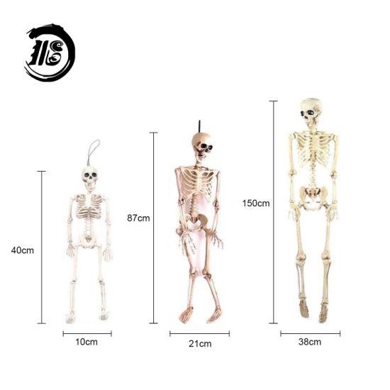 Custom Halloween Decoration Human Skeleton Model Medical Model