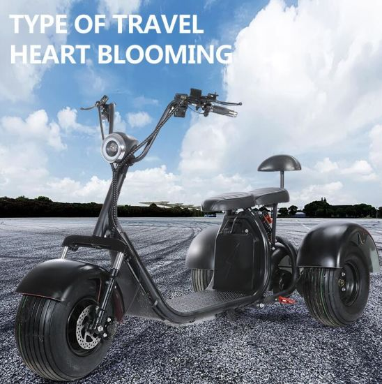 3 Wheel Electric Scooter Citycoco Fat Tire Golf Cart Tricycle 3wheel Electric Scooter
