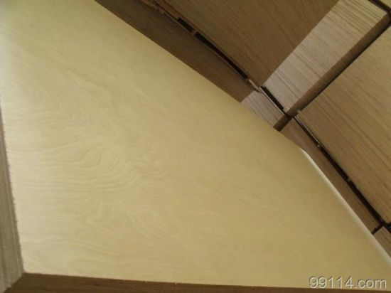 Plywood/Tego/Formwork/Shutter Ply CE Fsc Carb SGS Certified pictures & photos