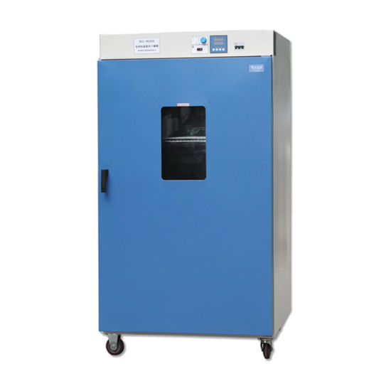 CE Approved Laboratory Drying Oven with Digital Display pictures & photos