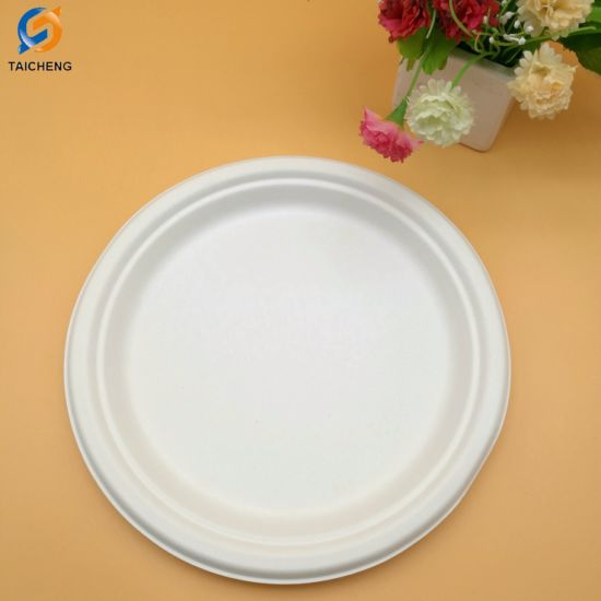 100% Environment-Friendly Biodegradable Plate Sugarcane Bagasse