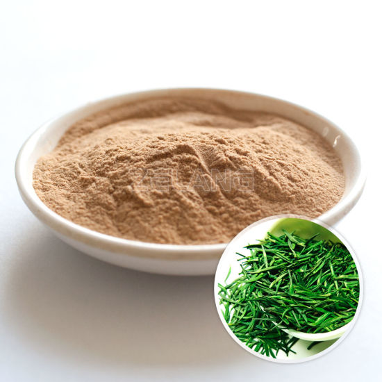 Green Tea Extract pictures & photos