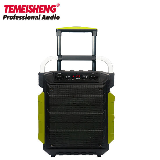 Temeisheng Outdoor Portable Wireless Professional Rechargeable Trolley Bluetooth PA Speaker