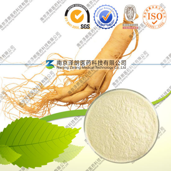 Factory Supply Ginseng Extract Powder 80% Ginsenoside pictures & photos