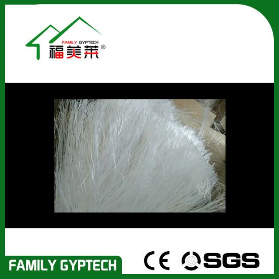 Glassfiber Tape for Making Cornice pictures & photos