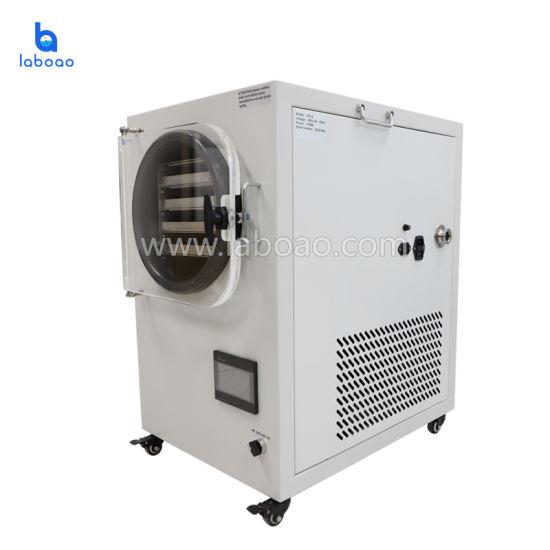 China Mini Small Laboratory Vacuum Freeze Dryer Lyophilizer