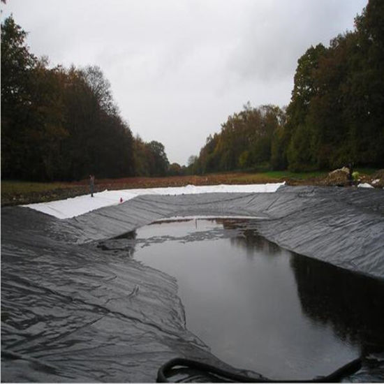 China hdpe pond liner geomembrane china geomembrane for Pond liner material