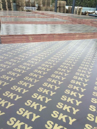 Factory-Film Face Plywood Use in Formwork 18mm and 15mm pictures & photos