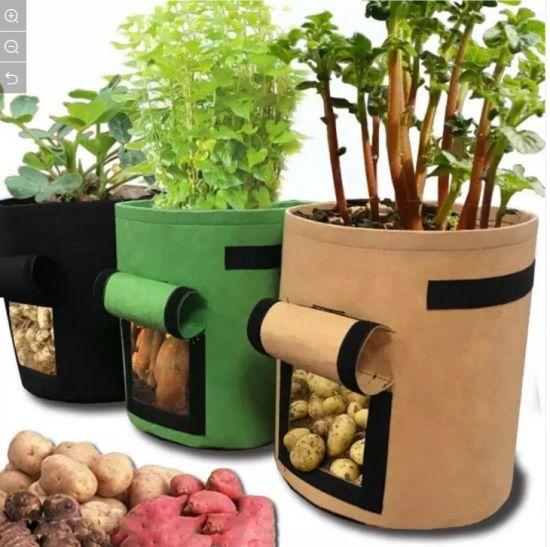 Gezi Indoor Green Felt Plant Grow Bag for Flower Vegetable