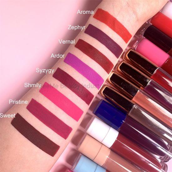 Cosmetics Makeup Fashion Colors Lip Gloss Private Label Matte Liquid Lipstick