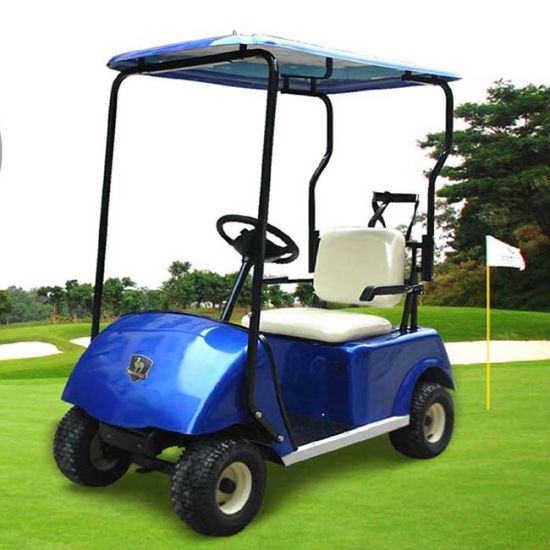 China Manufacturers 1 Seater Golf Cart Dg-C1 with Ce Certificate (China) pictures & photos