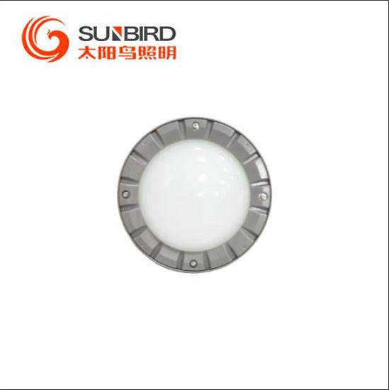 Sunbird Industrial Lighting Series LED Waterproof Platform Lamp