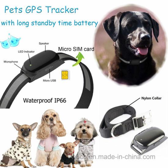 Mini Portable Pet GPS Tracker with Best GPS Accuracy EV-200