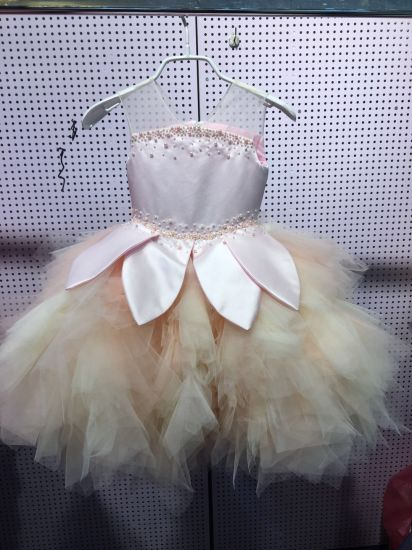 Princess Pink Pearls Little Baby Girl Dress Rsl001