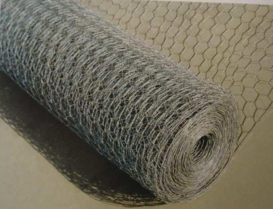 PVC Coated Hexagonal Wire Netting for Building Material with SGS pictures & photos
