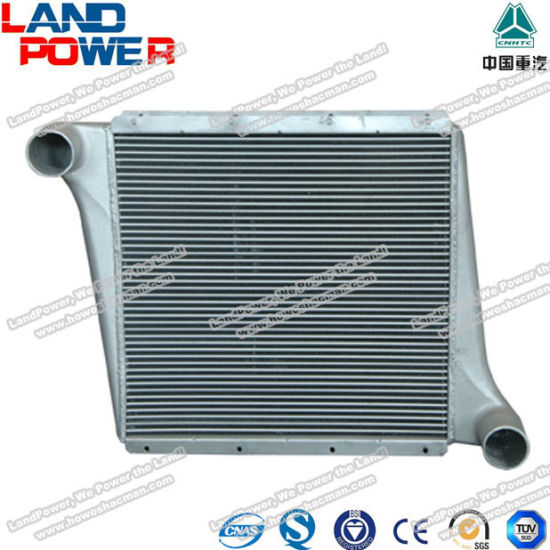 Wg9719530250 Genuine Intercooler HOWO Heavy Duty Truck Parts with SGS Certification