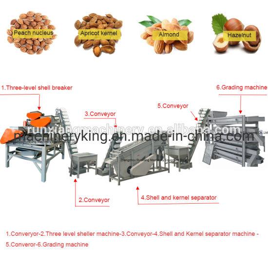 500kg Capacity Hazelnut Shell Cracker Almond Nut Cracking Sheller Processing Machine Line