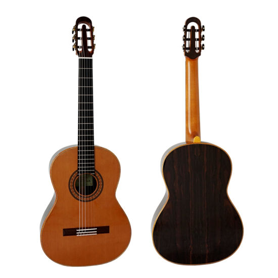 Solid Master Concert Spanish Neck Joint Double Top Classical Guitar