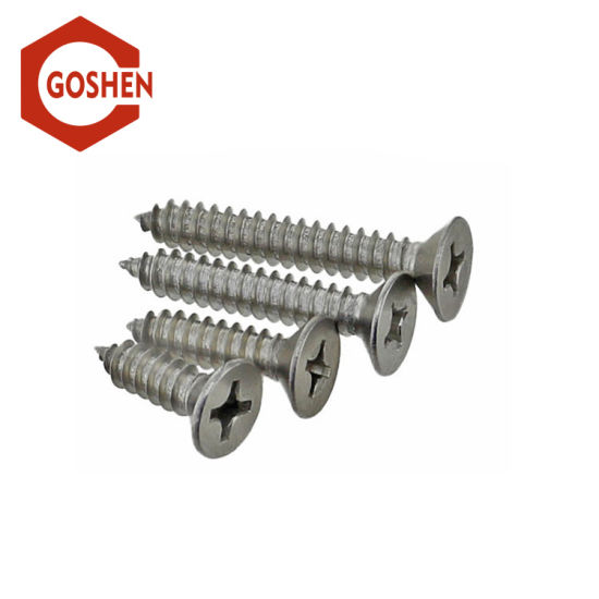 Stainless Steel 304 Self-Tapping Screws with Cross Recess Drive pictures & photos