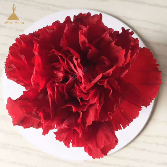 Preserved Carnation Flowers Head for Flower Arrangement pictures & photos