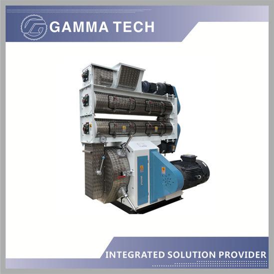 China Made Gamma Tech Cheap Price Poultry Chicken Duck Cattle Sheep Feed Pelletizer Granulator Pellet Mill Machine
