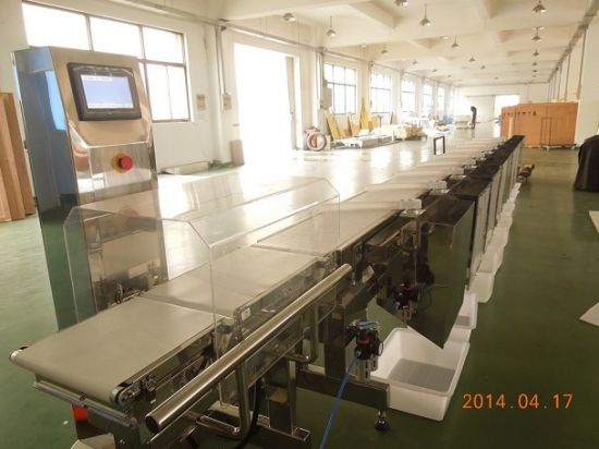6 Channel Outlets Automated Weight Grading Machine pictures & photos