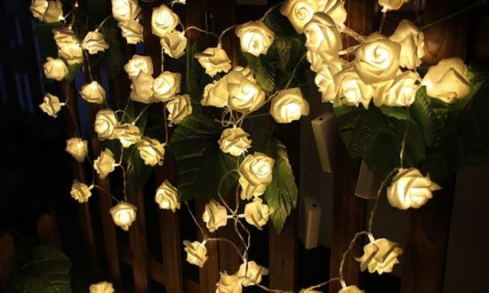 20 Or 30 Warm White Led Battery Operated Rose Bedroom Fairy Lights Pictures Photos