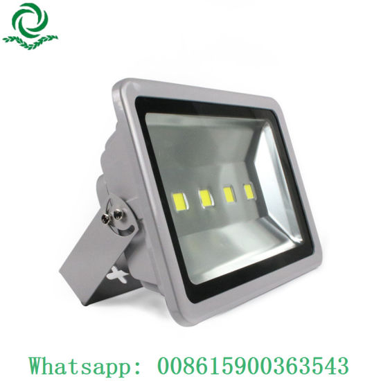 RGB Full Color 10W 20W 30W 40W 50W 100W LED Flood Light with Remote Control pictures & photos