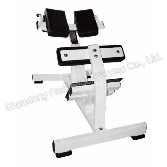 China hammer strength machine hyperextension multi gym fitness