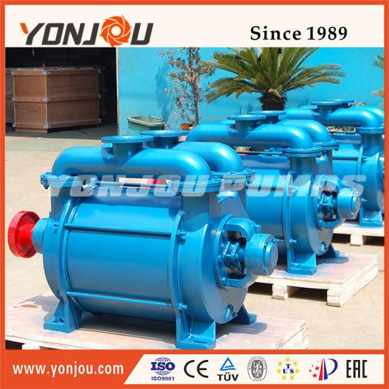 Yonjou Brand Liquid Ring Vacuum Pump