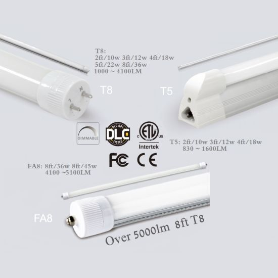 China T5 Led Light With 1600lm For