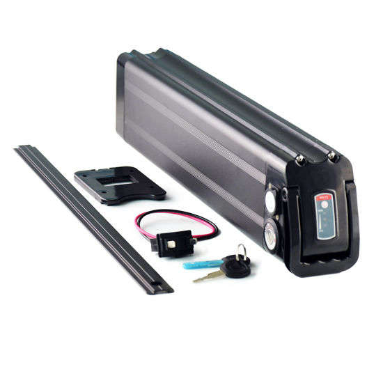 Hot Sale Electric Vehicle 36V 10ah Battery Pack for Ebike