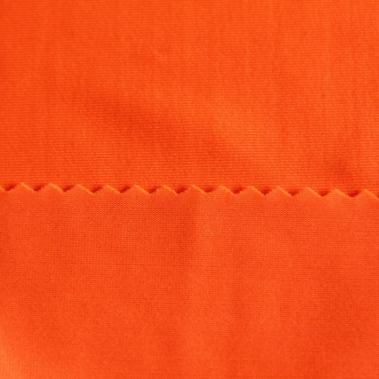 Fashionable Polyester Dance Wear Cycling Wear Fabric for Sports Wear