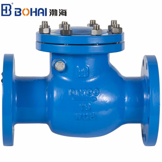 Ductile Iron Swing Industrial Check Valve EPDM or Brass Seal Used to Water Control Pipe