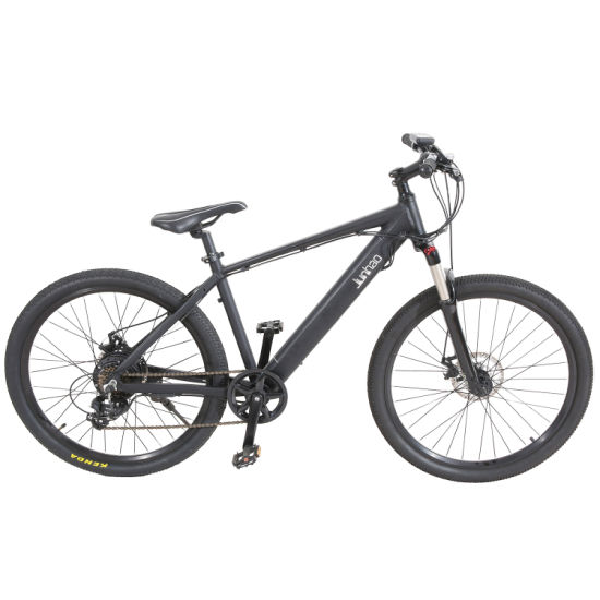 48V350W Mountain Electric Bike with Suspension Pedal Assit System pictures & photos