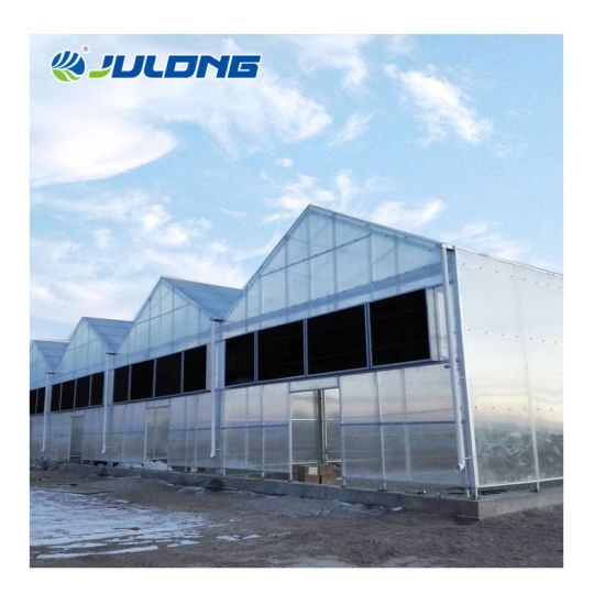 High End Microgreens Lettuce Hydroponic Glass Greenhouse for Sale