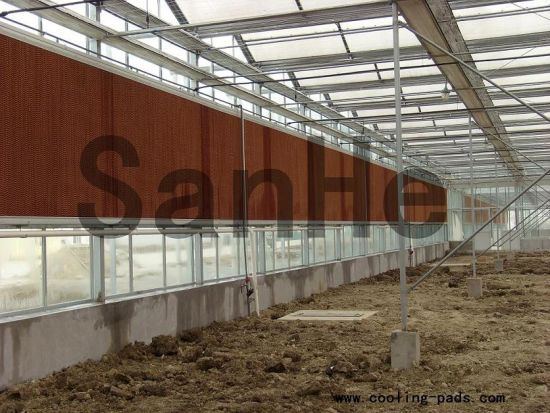 High Efficiency Honey Comb Evaporative Cooling Pad for Green Houses Ventilation pictures & photos