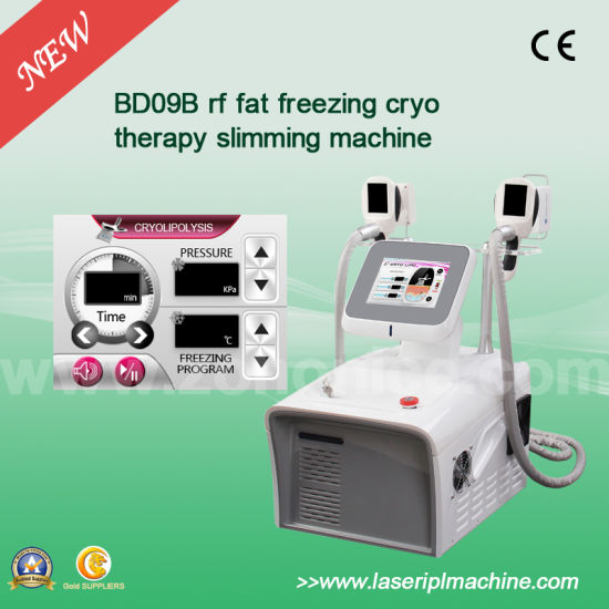 Bd09b-Bailee Cryolipolysis Fat Cooling Slimming Machine pictures & photos