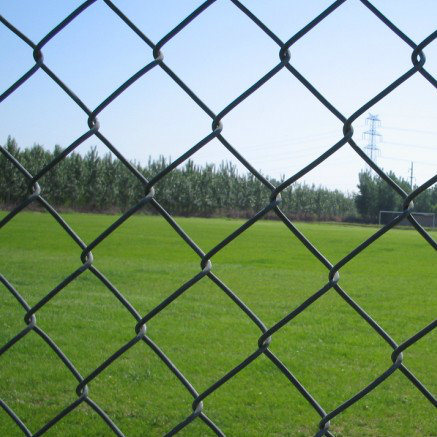 Chain Link Fence Price/Chain Link Fence Factory pictures & photos