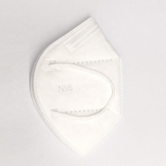 Disposable Respirator Dust Masks