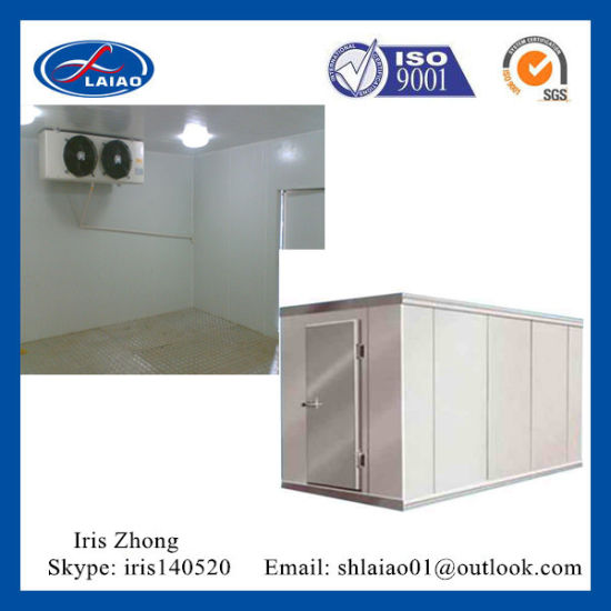 Walk In Freezer For Sale >> China Hot Sale Cold Room Walk In Freezer For Fruit Fish Meat