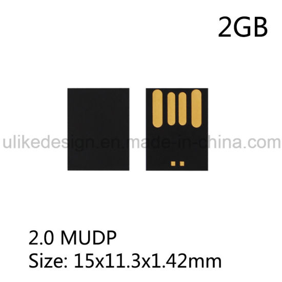 DIY USB Flash Drive Micro UDP Chip 2GB Pictures Photos