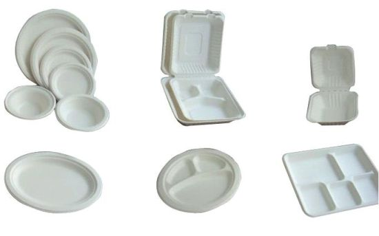 Eco-Friendly Biodegradable Oval Sugarcane Food Trays pictures & photos